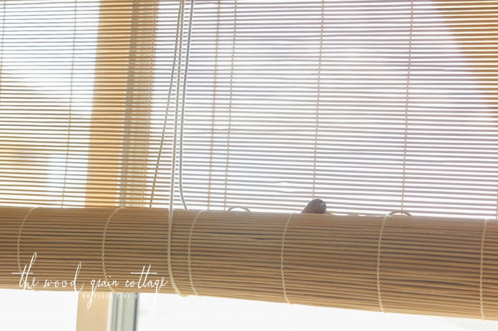 Bamboo Blinds For Your Windows Carehomedecor