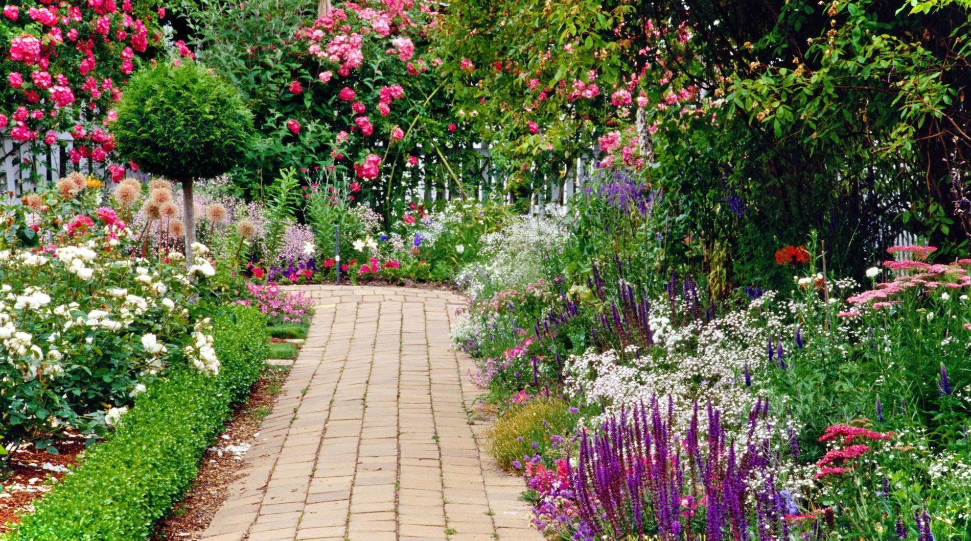 Красивый сад своими руками на даче фото