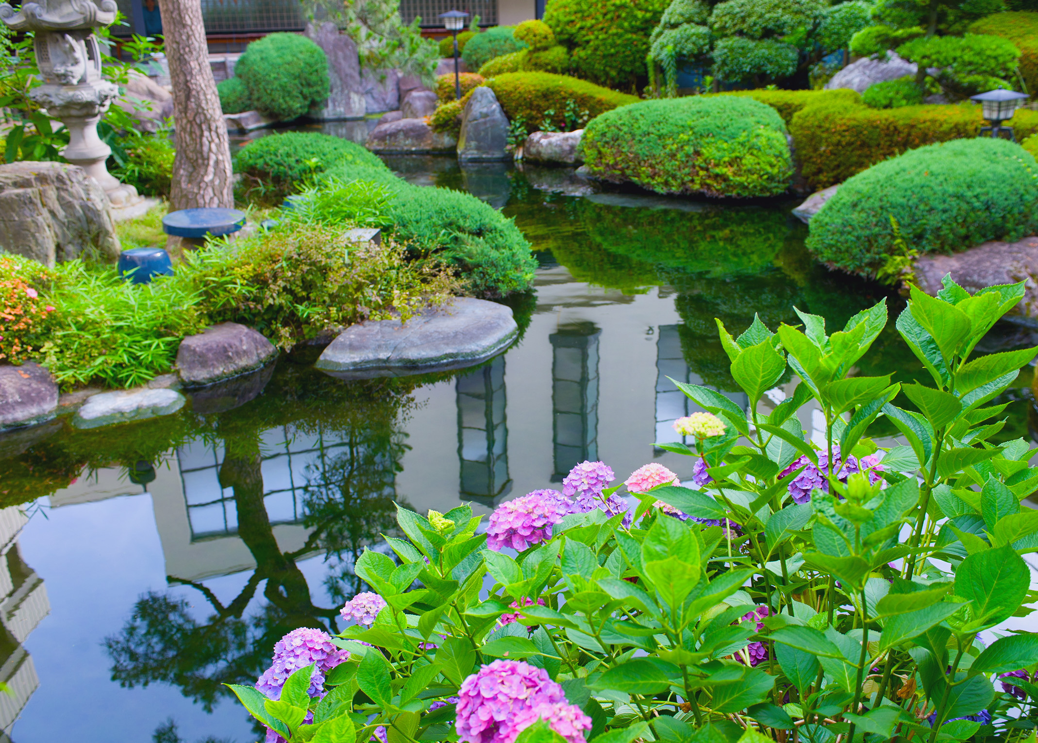 Make your water gardens with trendy pond designs for Making a water garden