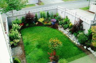 Backyard Garden  23