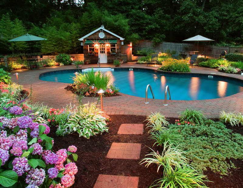 Beautiful Backyard  30