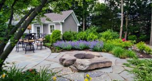 Beautiful Backyard  49