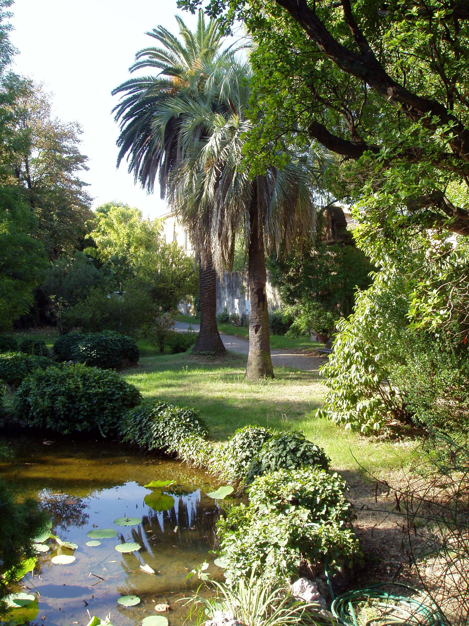 Botanical gardens  43