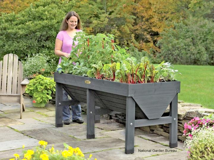 Container Gardening Offers Aesthetic Sense to the Surroundings