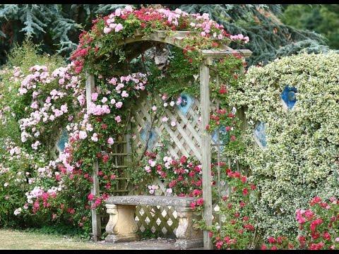 cottage garden designs  14