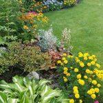 Creative cottage garden designs