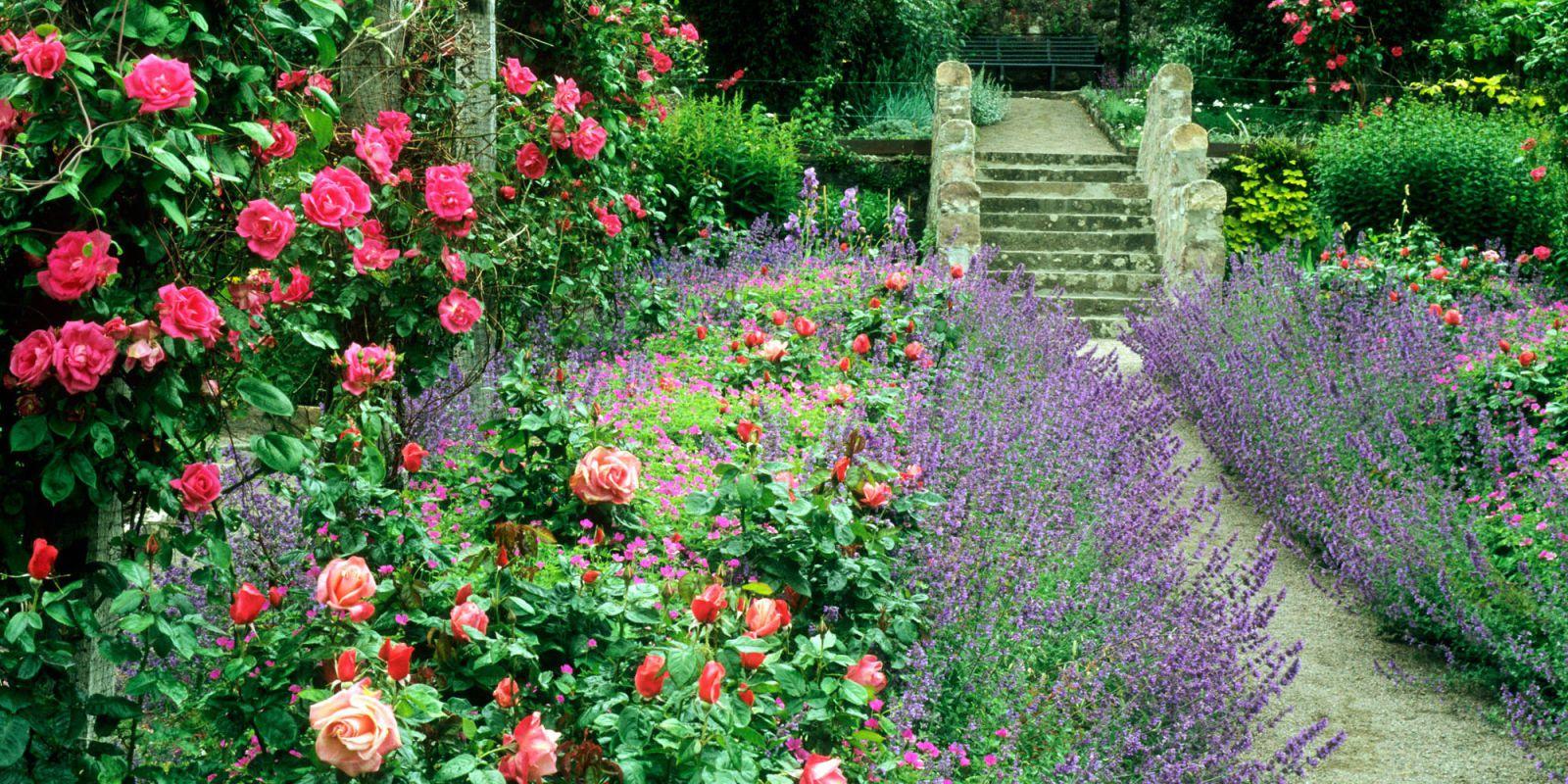 Cottage Garden Ideas  01