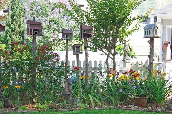 Cottage Garden Ideas  47