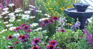 Cottage Garden Ideas  75