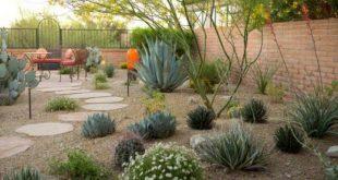desert landscaping  10