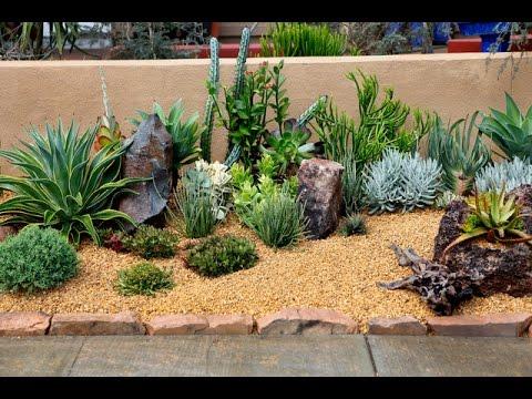 desert landscaping 35