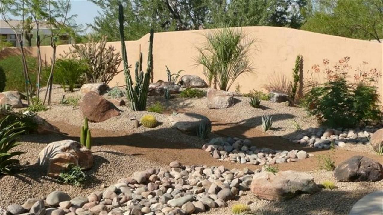 aménagement paysager désertique 78