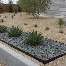 desert landscaping  87