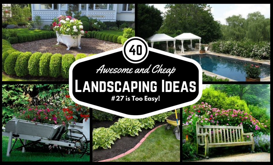 Easy landscaping  81