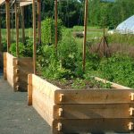 Elevated garden beds for good looks