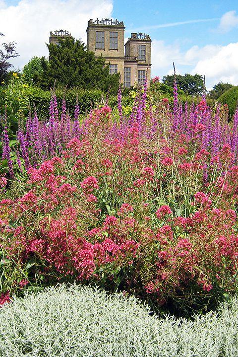 English gardens  06