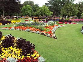 Flower garden  95