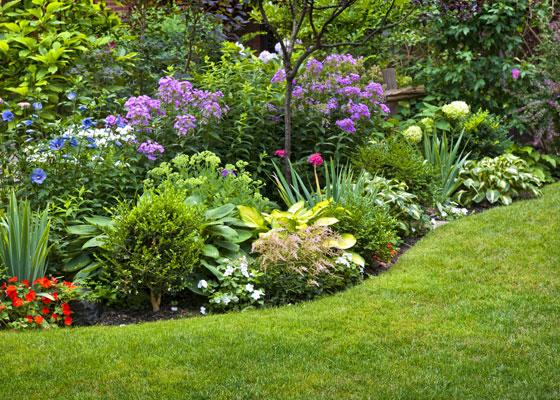 Flower gardens  23