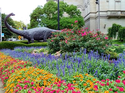 Flower gardens  90