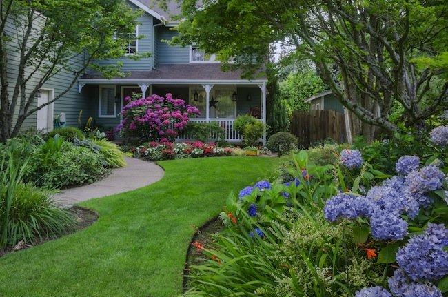 front yard landscape  28