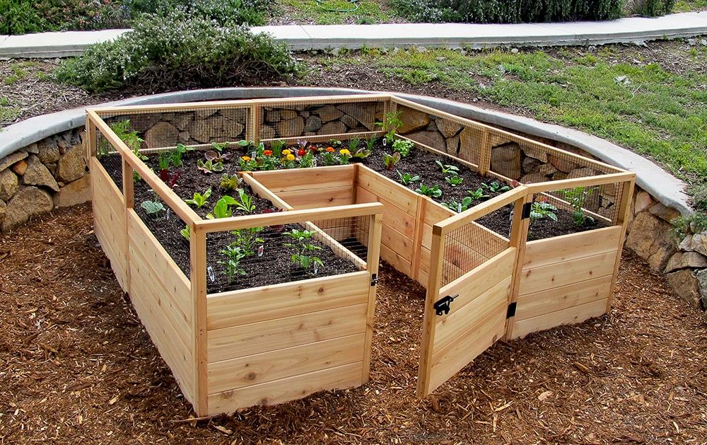 garden beds  32
