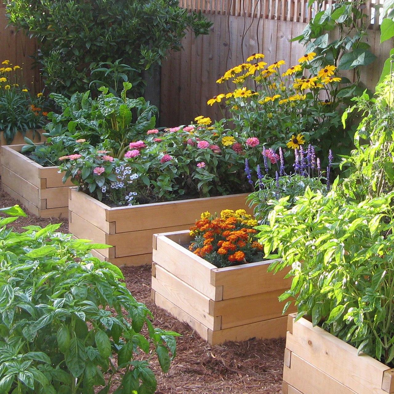 garden beds  42
