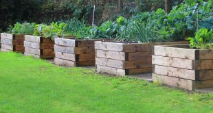 garden beds 59