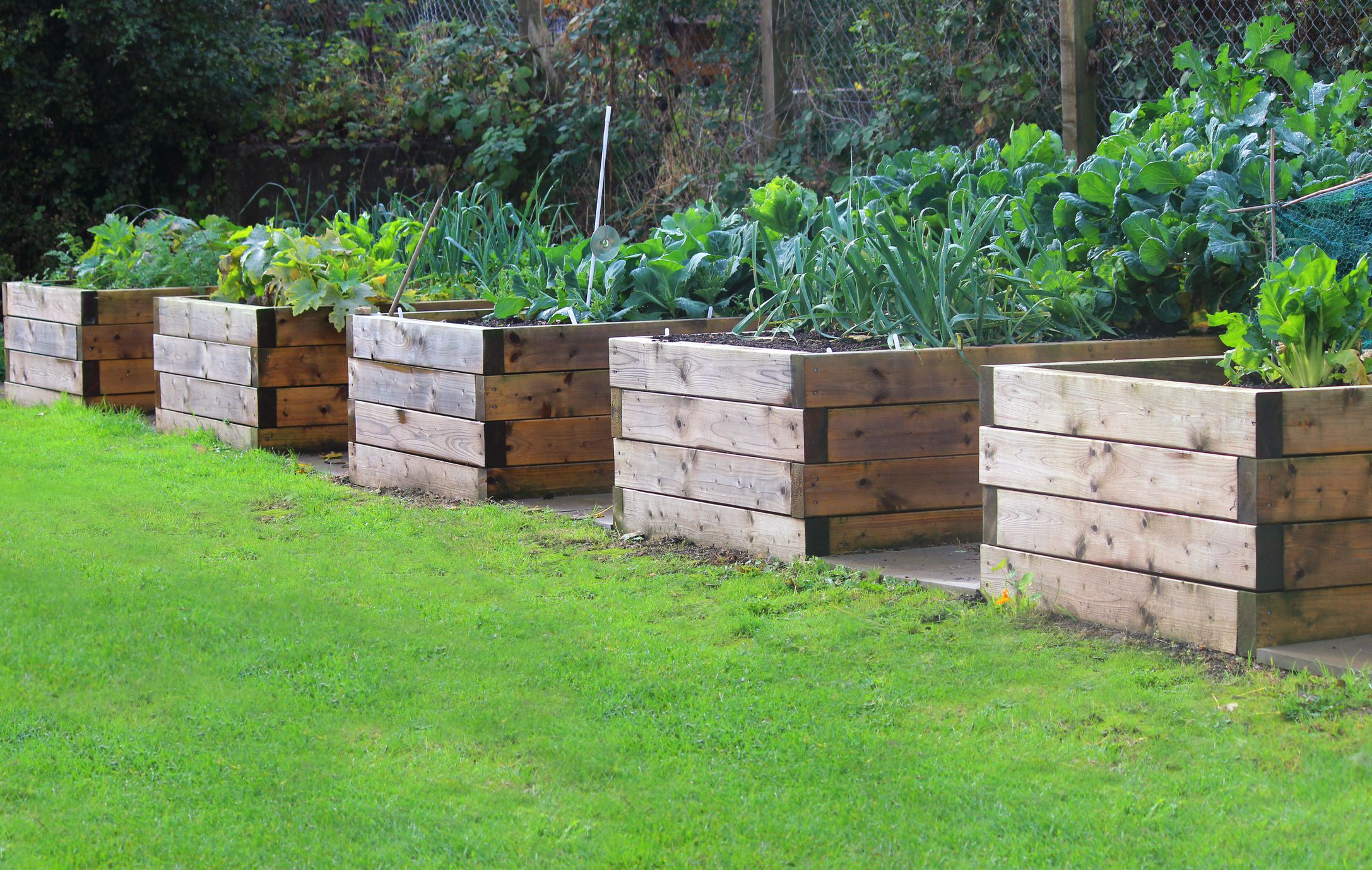Make your garden more beautiful with garden beds