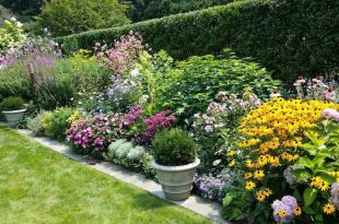 Garden borders  57