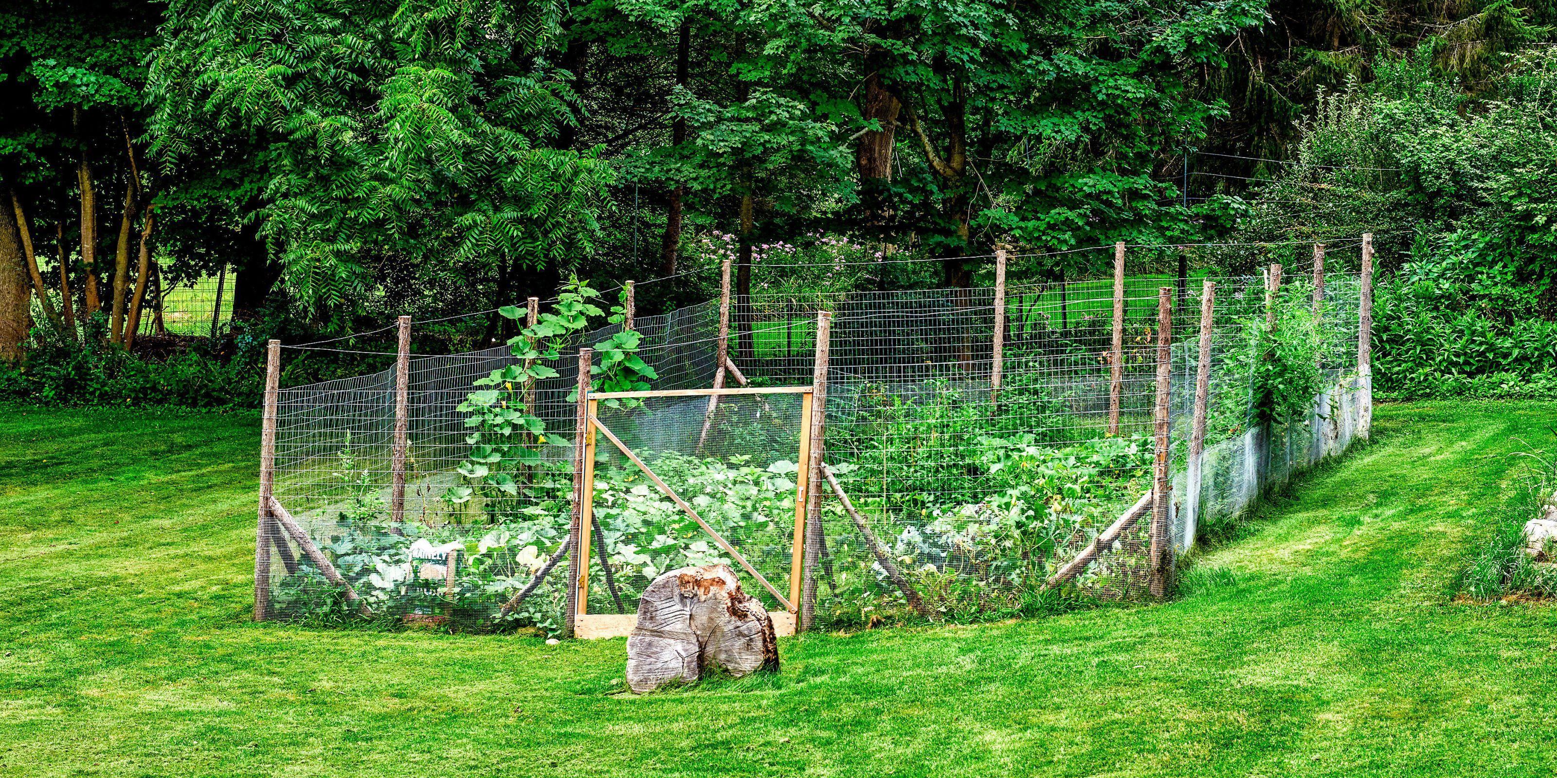 garden fence  16