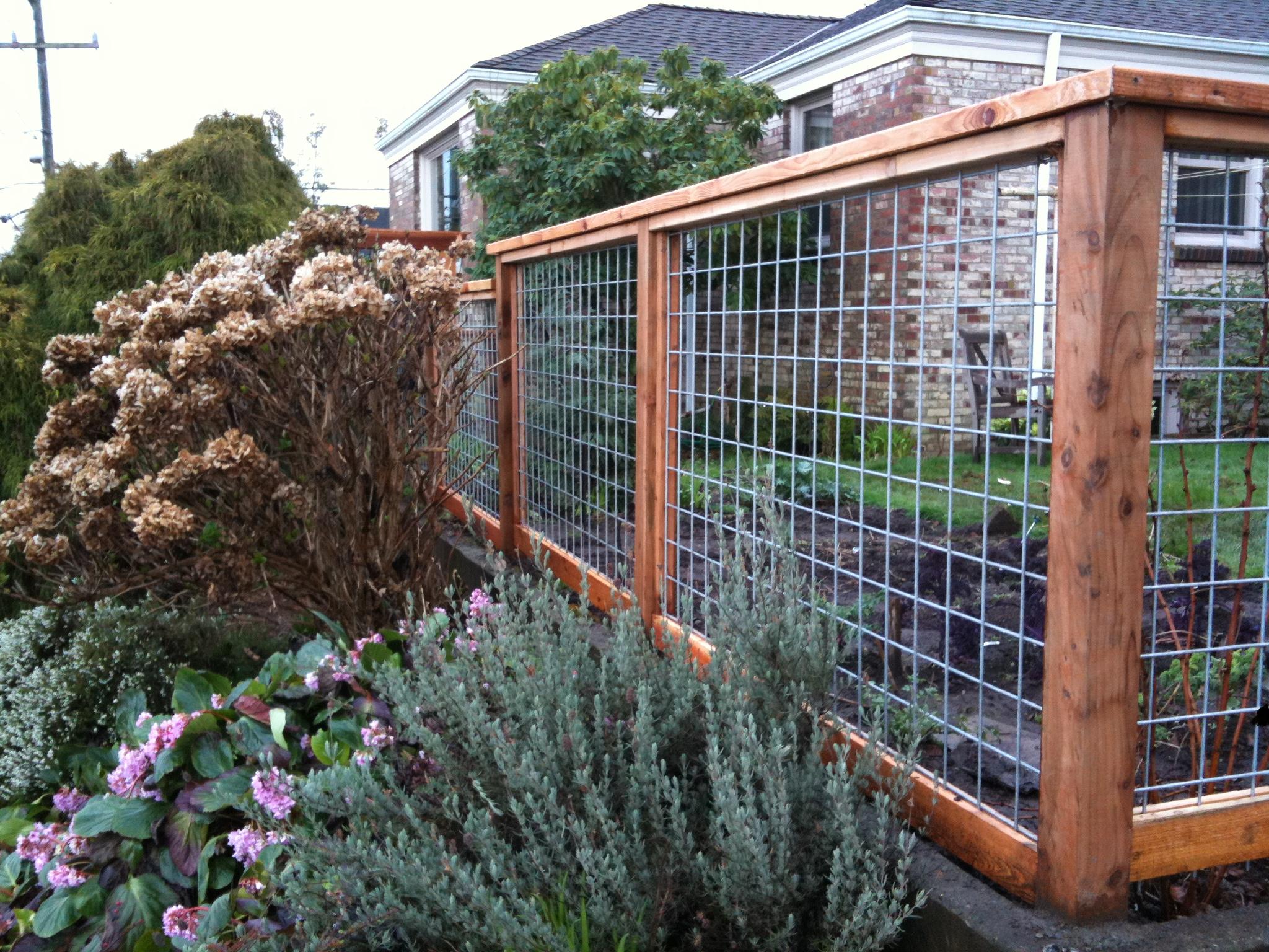 garden fences  16