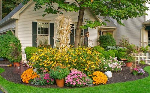 Enhance look of your garden with Garden ideas