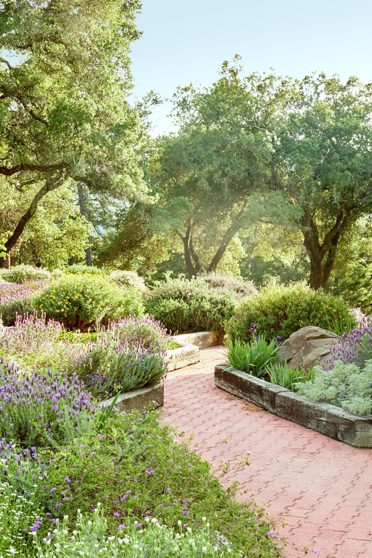 Garden landscape  76