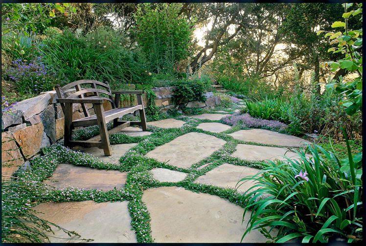 garden landscaping  53