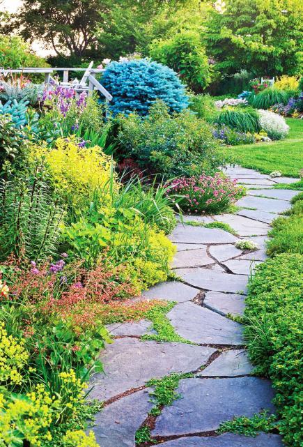 garden paths  86