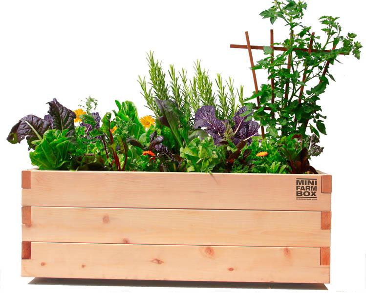 garden planters  26