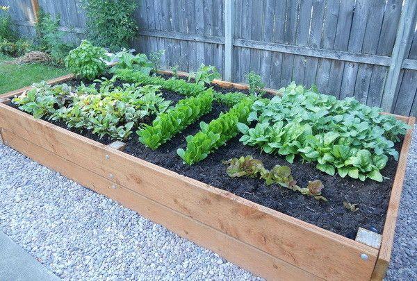 garden planters  82