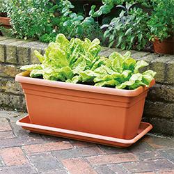 garden pots  30