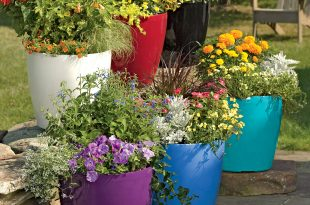 garden pots  91