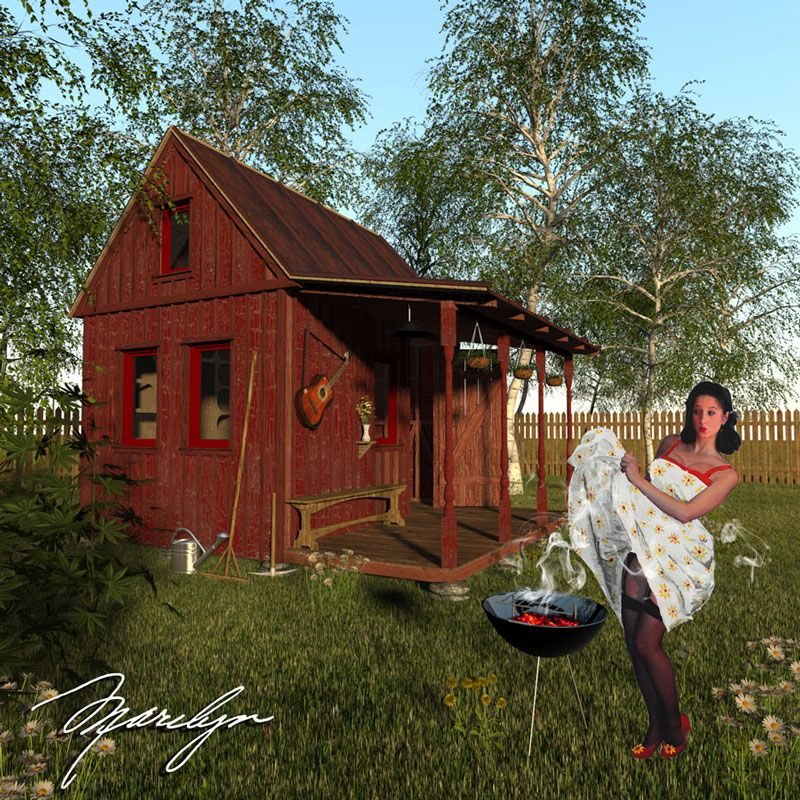 Garden shed  57