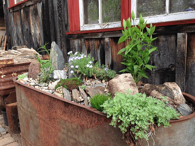 garden trough  41