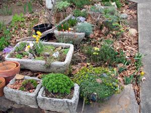 garden trough  73