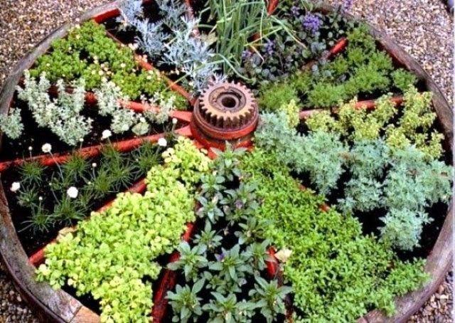 herb garden  81