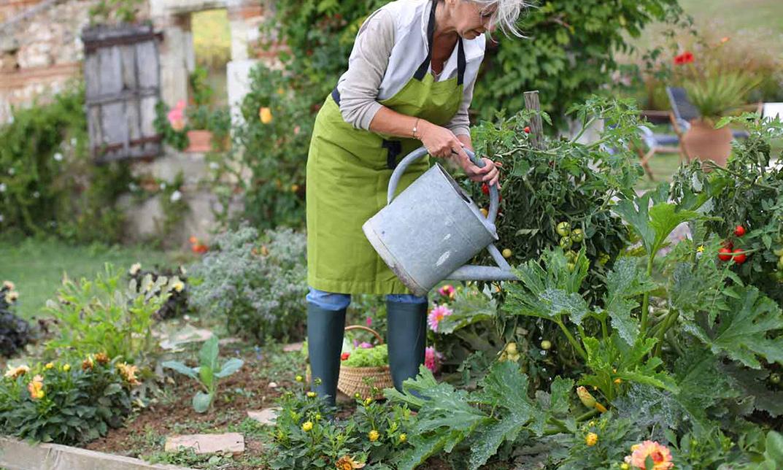 home gardening  10