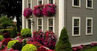 home landscaping  09