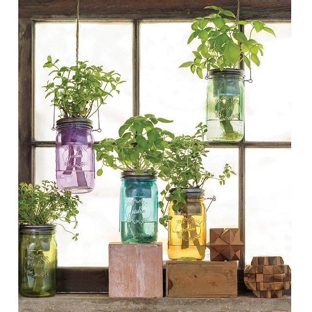 indoor herb garden  81