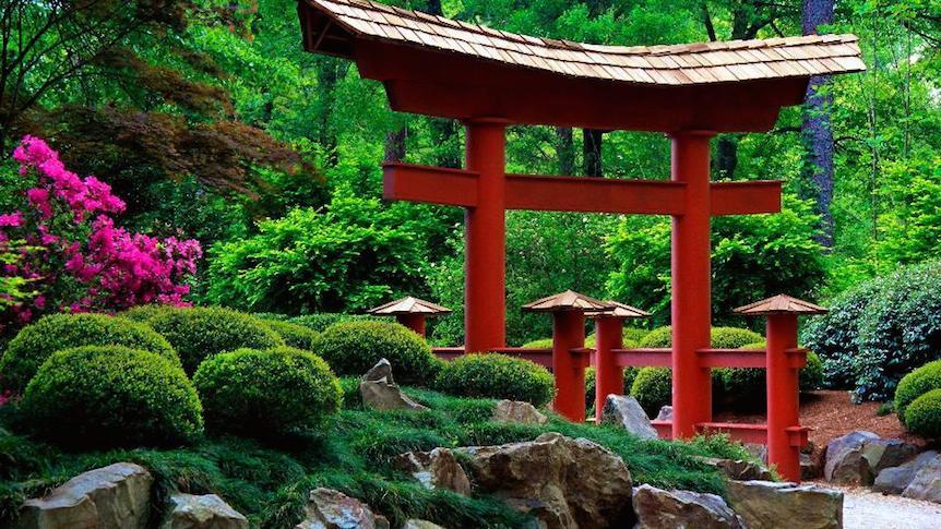 Japanese garden  30