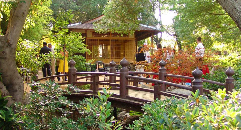 Japanese garden  78