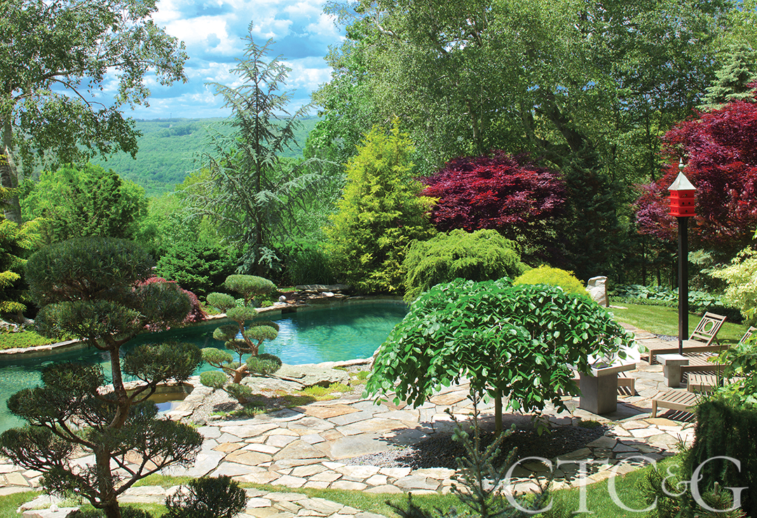 Japanese garden  80