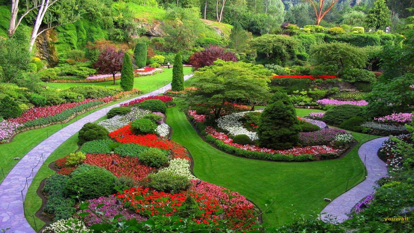 Create a beautiful world with landscape designs!